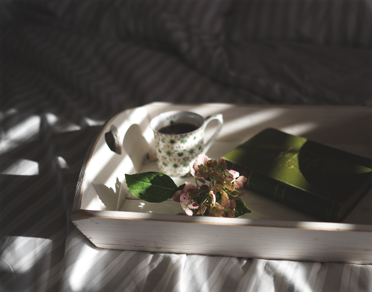 """Tajna kći"" by Kelly Rimmer – Australski domovi, ibsenovski feminizam i priča koju treba razvijati"