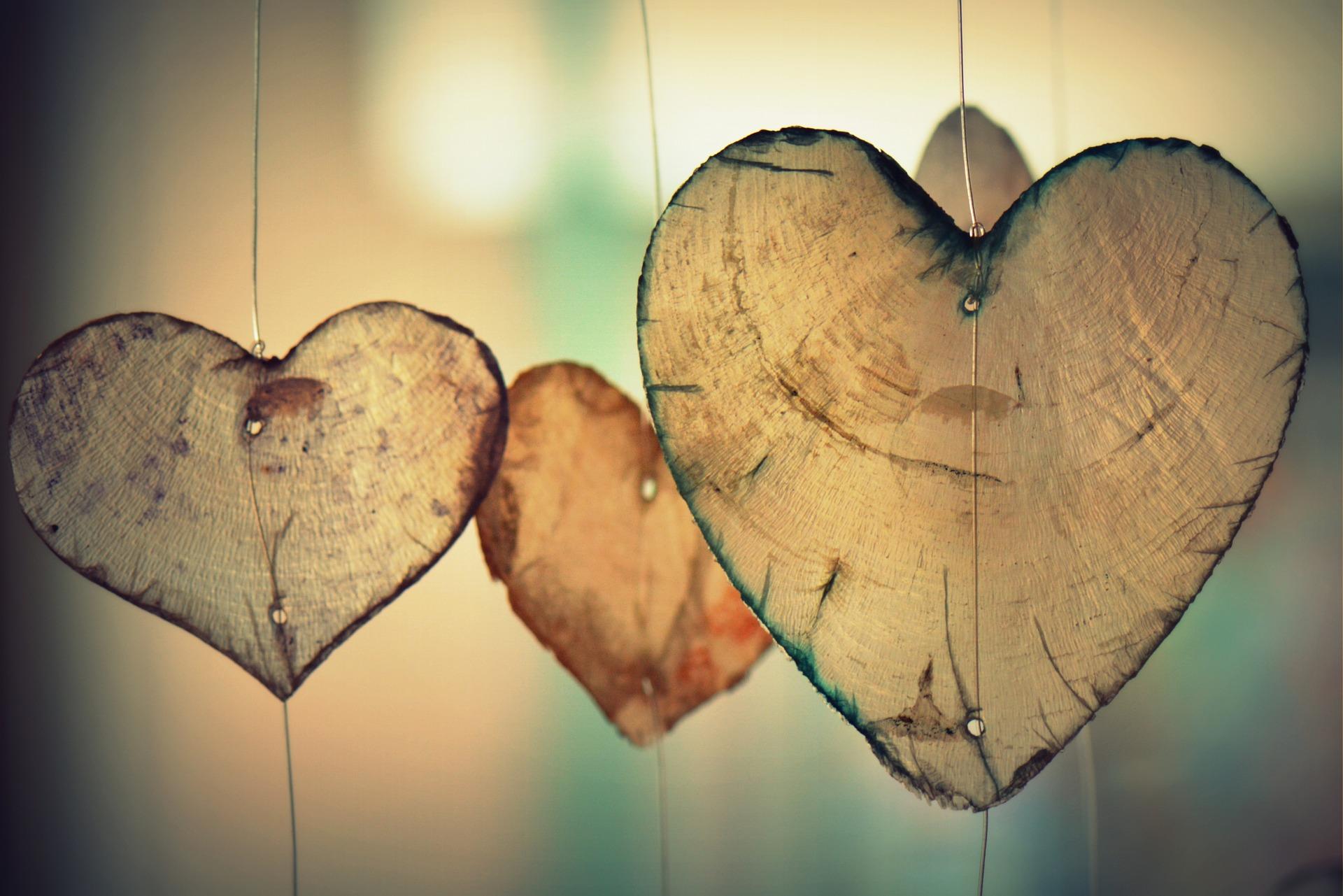 Jeste li znali? Srce ima svoje polje i inteligenciju! ,Usputna misao, Kada se srce otvori, sve nalikuje proljeću – Sve je svježe i lijepo!