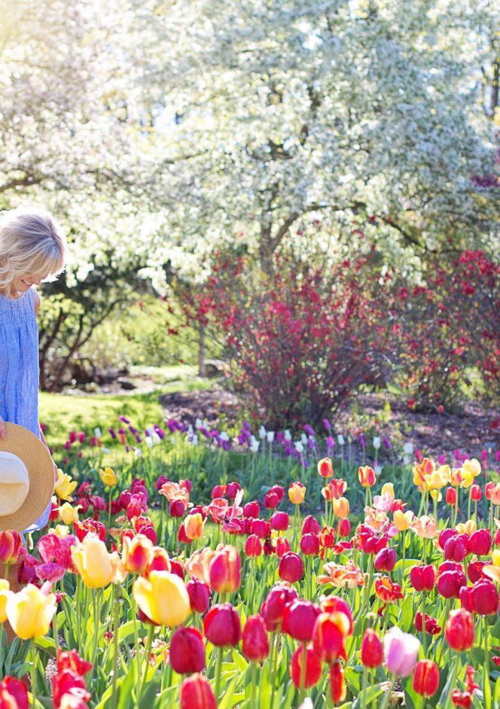 Proljeće je osmoga u ožujku