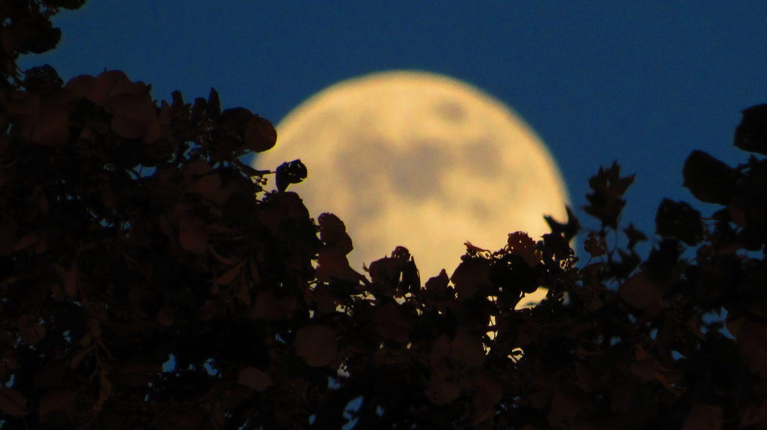 Puni Mjesec u Ribama 14.09. donosi nam zaista svašta…