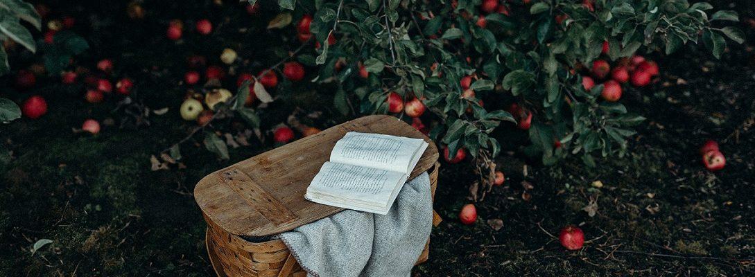Snježana Akrap-Sušac: Snjeguljica ne jede jabuke