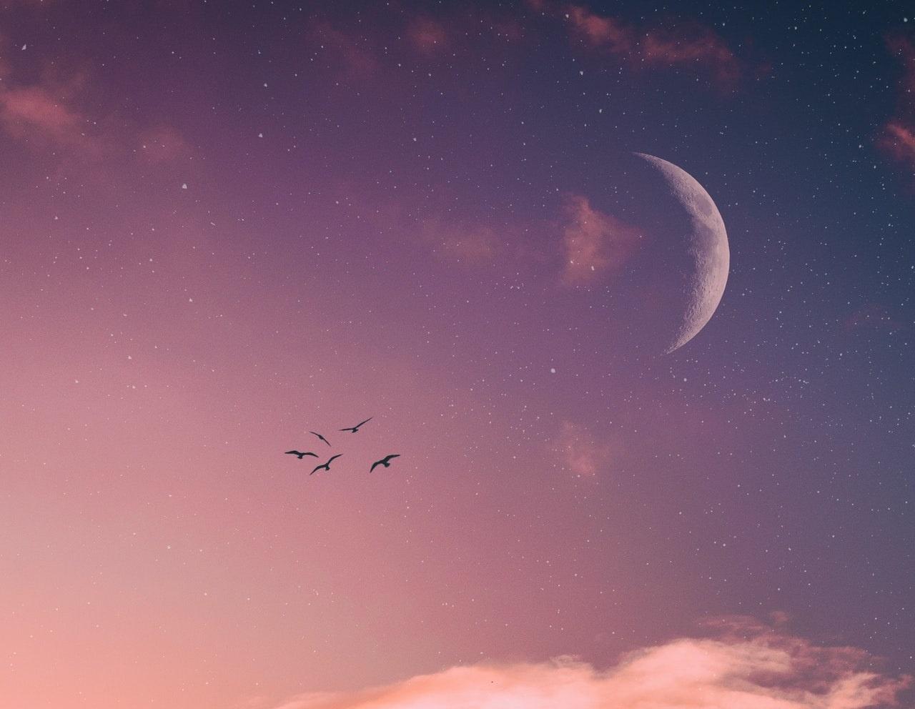 Na koga će najviše utjecati Mlad Mjesec u Lavu?