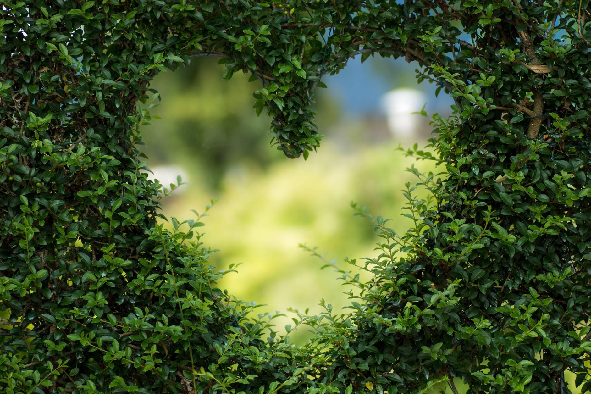 Znakovi koji ukazuju da ćete susresti ljubav svog života